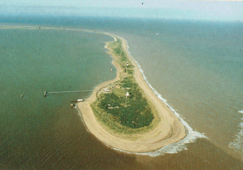 31st July, 2019  Reed's Island, Ravenser Odd, Sunk Island, postscript.