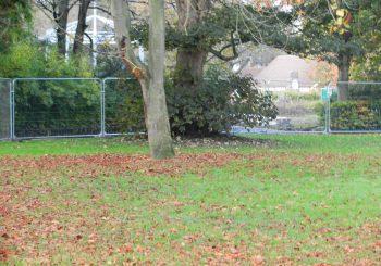 11th November, 2019  Restoration Project Pearson Park, Hull (5).