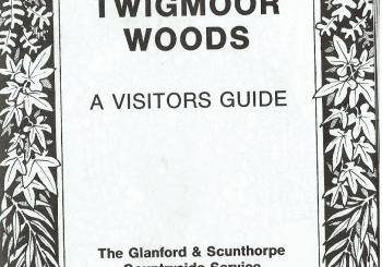 26th November, 2019  Twigmoor Woods 3,