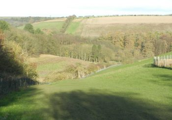 Recent middle distance walk, Yorkshire Wolds.